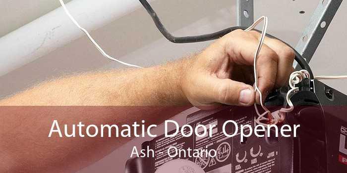 Automatic Door Opener Ash - Ontario