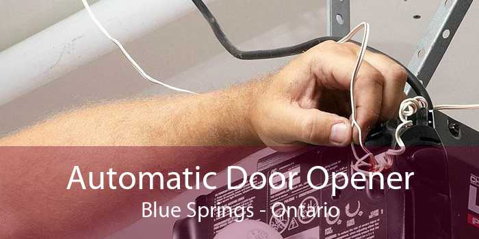 Automatic Door Opener Blue Springs - Ontario