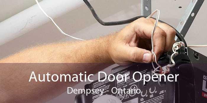 Automatic Door Opener Dempsey - Ontario