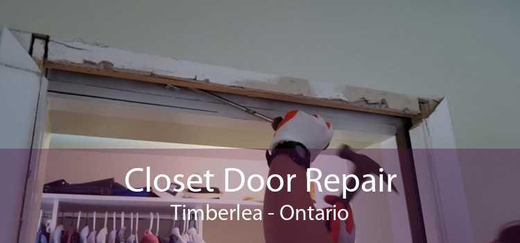 Closet Door Repair Timberlea - Ontario