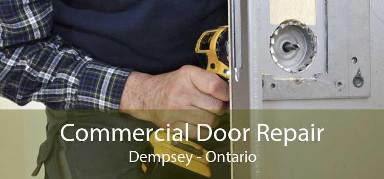 Commercial Door Repair Dempsey - Ontario