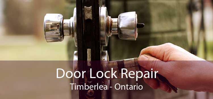 Door Lock Repair Timberlea - Ontario