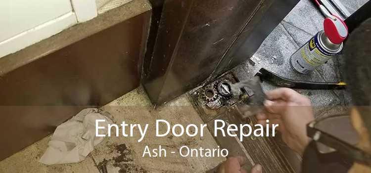 Entry Door Repair Ash - Ontario