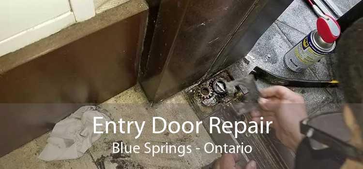 Entry Door Repair Blue Springs - Ontario