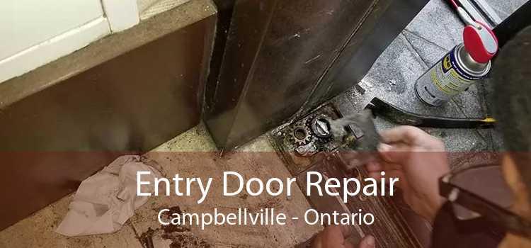 Entry Door Repair Campbellville - Ontario