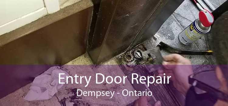 Entry Door Repair Dempsey - Ontario