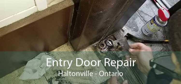 Entry Door Repair Haltonville - Ontario