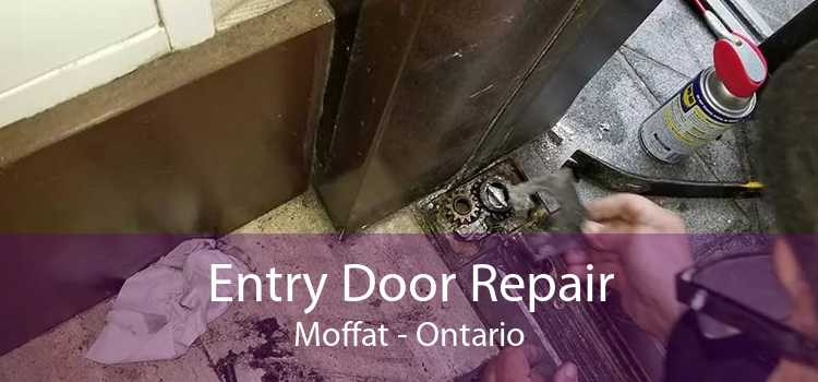 Entry Door Repair Moffat - Ontario