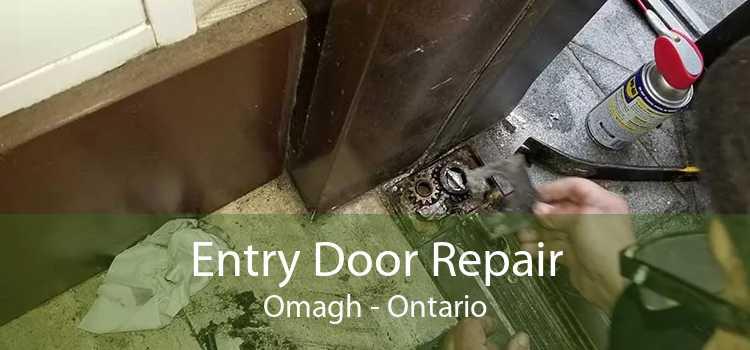 Entry Door Repair Omagh - Ontario