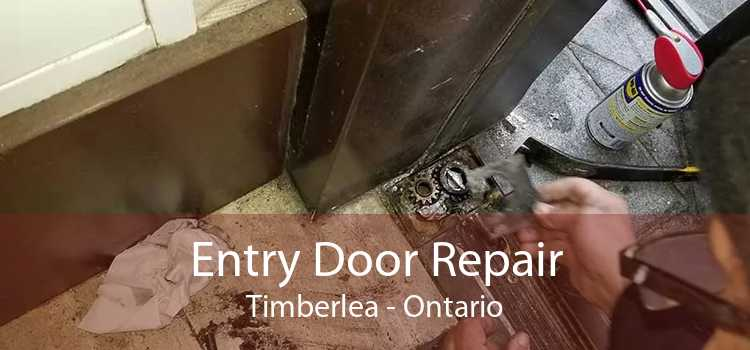 Entry Door Repair Timberlea - Ontario