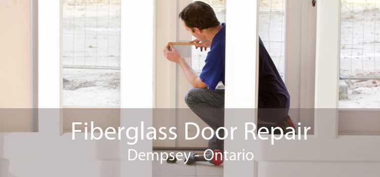Fiberglass Door Repair Dempsey - Ontario
