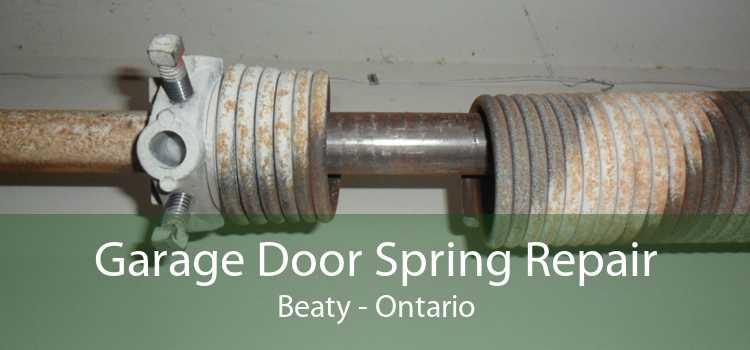 Garage Door Spring Repair Beaty - Ontario