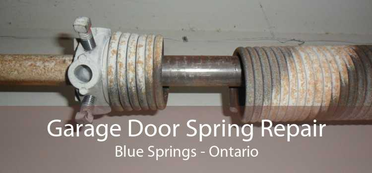 Garage Door Spring Repair Blue Springs - Ontario