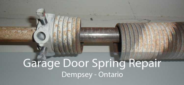 Garage Door Spring Repair Dempsey - Ontario