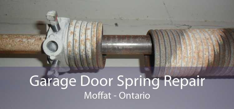 Garage Door Spring Repair Moffat - Ontario