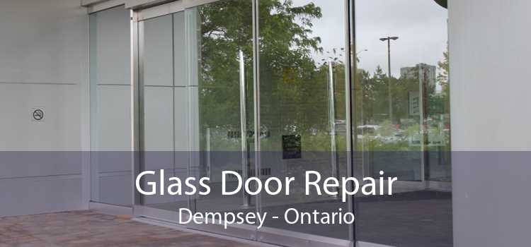 Glass Door Repair Dempsey - Ontario