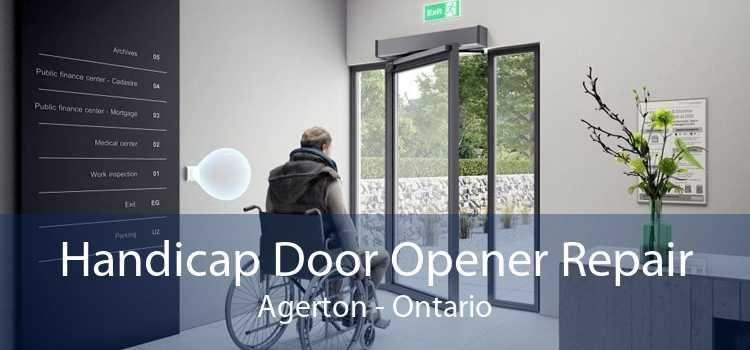 Handicap Door Opener Repair Agerton - Ontario
