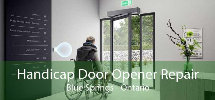 Handicap Door Opener Repair Blue Springs - Ontario