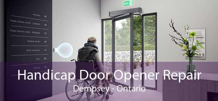 Handicap Door Opener Repair Dempsey - Ontario
