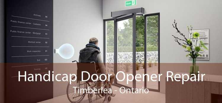 Handicap Door Opener Repair Timberlea - Ontario