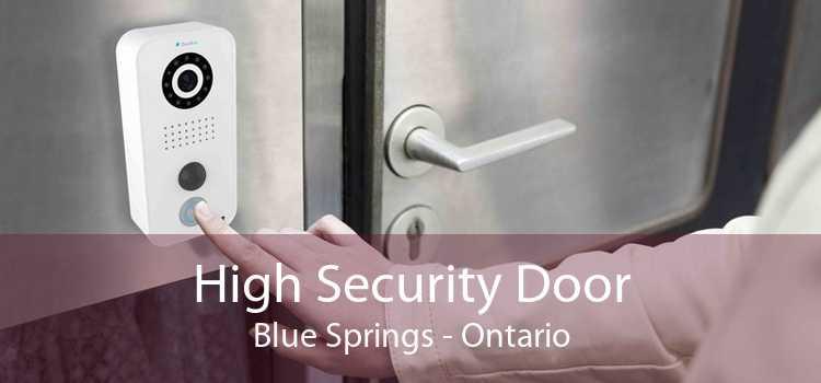 High Security Door Blue Springs - Ontario