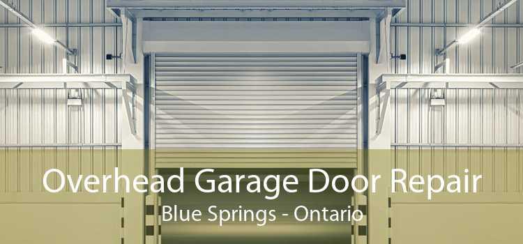 Overhead Garage Door Repair Blue Springs - Ontario