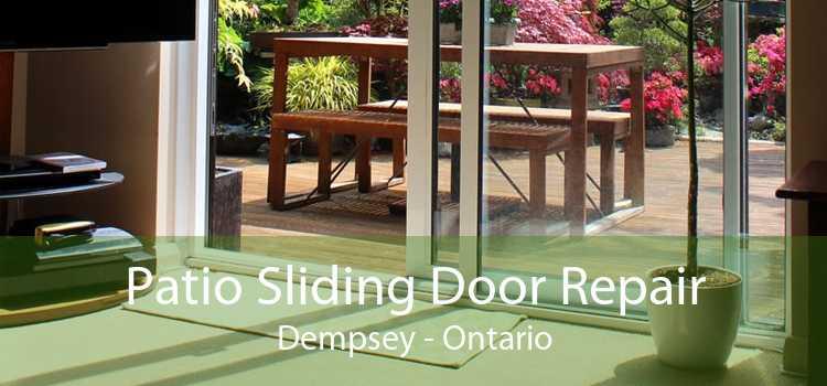 Patio Sliding Door Repair Dempsey - Ontario