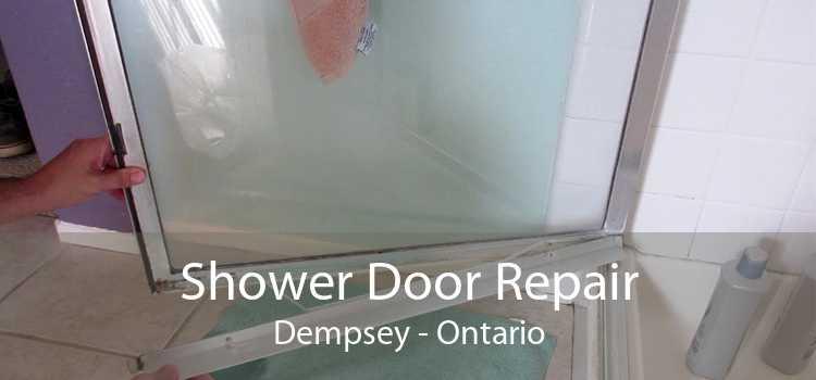 Shower Door Repair Dempsey - Ontario