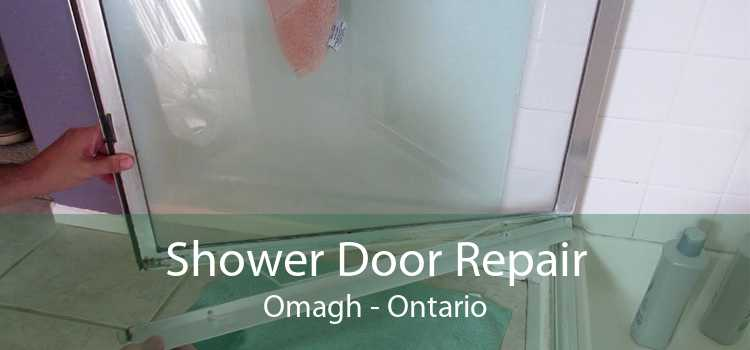 Shower Door Repair Omagh - Ontario