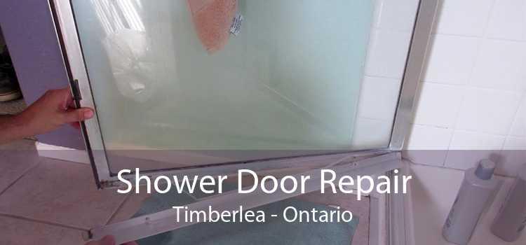 Shower Door Repair Timberlea - Ontario