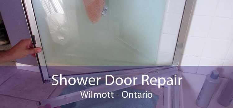 Shower Door Repair Wilmott - Ontario