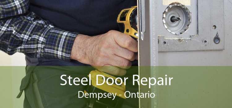 Steel Door Repair Dempsey - Ontario