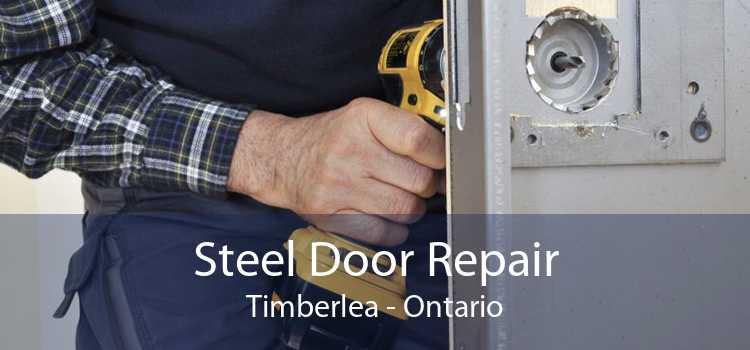 Steel Door Repair Timberlea - Ontario