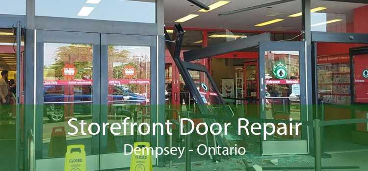 Storefront Door Repair Dempsey - Ontario