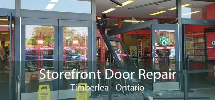 Storefront Door Repair Timberlea - Ontario